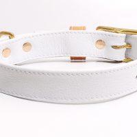 2. PURE WHITE collar 3
