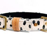 1. DALMATIAN collar 2