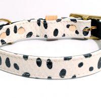 1. DALMATIAN collar 3