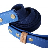 3.New Blue leash_5