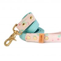 Pinky Dots with mint leash 2