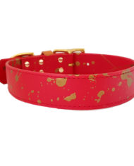 Red and Gold collar_4