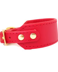 Red greyhound collar_3