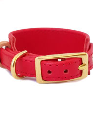 Red greyhound collar_4
