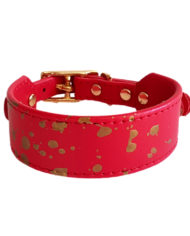 Red with Gold greyhound collar_2