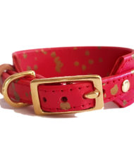 Red with Gold greyhound collar_5
